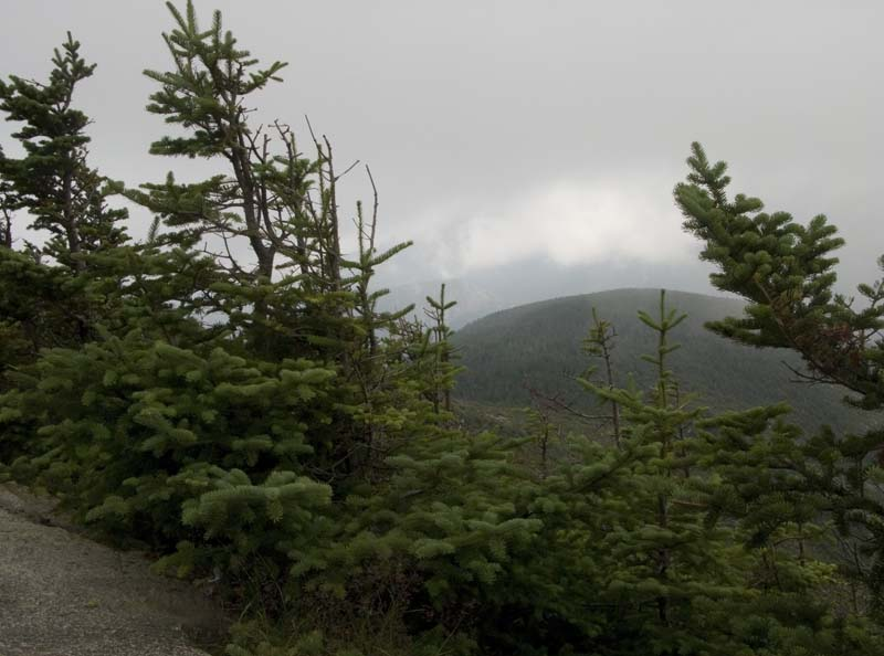View from Cannon Mountain, August 2009