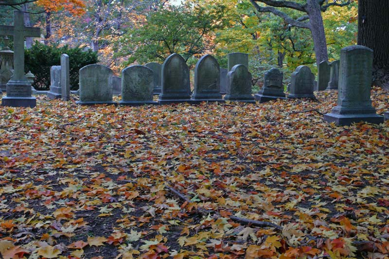 Mount Auburn cemetery, outside Cambridge, Mass, October 2007