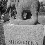 showmens-rest-elephant
